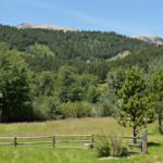 10940-bridger-canyon-rd-bozeman-mt-19