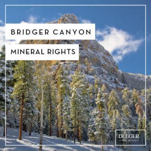 Bridger Canyon Mineral Rights